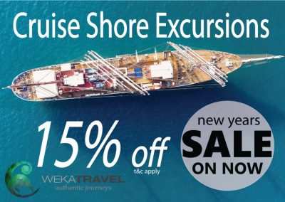SPECIAL OFFERS – CRUISE SHORE EXCURSIONS